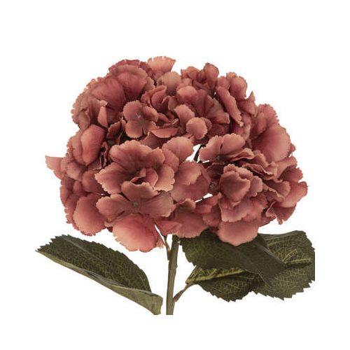 Hortenzia pasztel pink