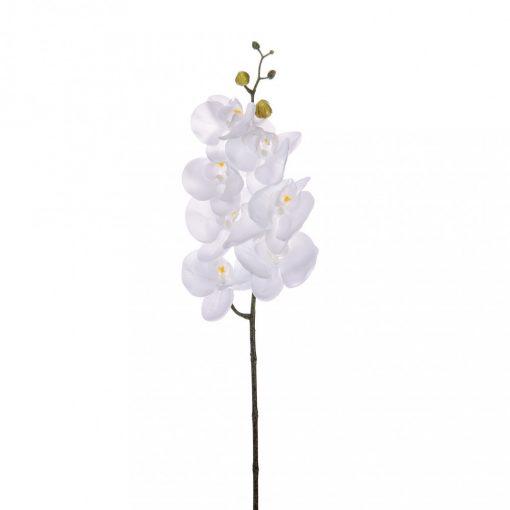 Orchidea 7 virággal fehér