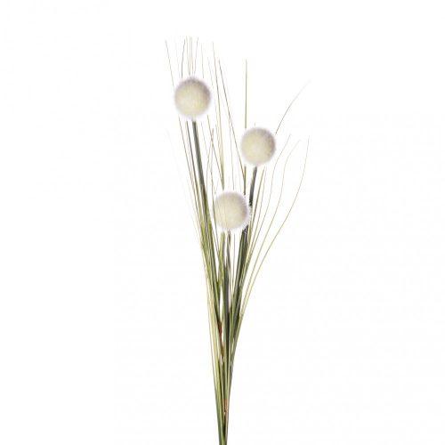 Pompom fű fehér
