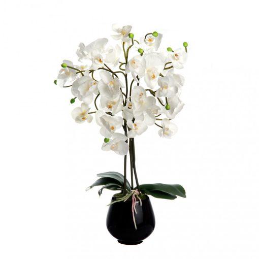 WJ.Orchidea fehér 53cm
