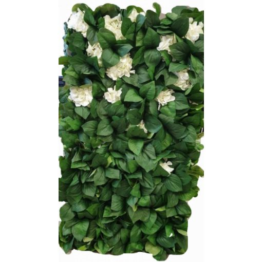 Zöld növény FAL